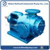 Pompa a ingranaggi interna del petrolio approvato della resina NYP160 del CE