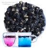 黒いGoji乾燥した有機性黒いGojiの果実のシード