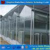 野菜のためのポリカーボネートの材料によって使用される商業温室