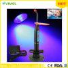 Dental sin cuerda sin 10W LED que cura la luz de la lámpara 2000 MW