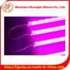 Завод СИД растет завод ви-образност Light/LED растет свет для Hydroponic, СИД пробки растет освещение