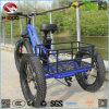 Motorino elettrico della rotella del commercio all'ingrosso 3 della Cina con la gomma grassa per l'adulto