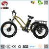 [350و] شحن درّاجة ثلاثية كهربائيّة سمين إطار العجلة 3 عجلة درّاجة شاطئ عطلة