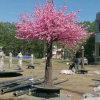 Rosafarbener künstlicher Kirschblüten-Baum mit drehender Unterseite