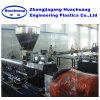De tweeling Extruder van de Schroef en Klein Plastiek die de MiniMachine van de Granulator recycleren