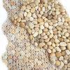 Естественная плитка камня реки мозаики