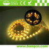 IP67 Waterproof LED Strip Light con CE e RoHS