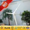 3kw Wind Generator From Chine Manufacturer (Wind Turbine Generator 90W-300KW)