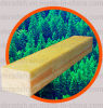 カシによって薄板にされる純木板