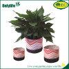 Цветки роз Onlylife самонаводят плантатор ткани сада Decotarion