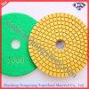 100mm Wet Flexible Diamond Polishing Pads (HXPAD100)