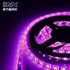 La barra chiara 5m di Epistar LED indicatore luminoso di striscia di 5050 SMD IL RGB LED ha passato il Ce. RoHS, FCC