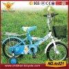 14  blauer Himmel-Farben-Kind-Fahrrad-/More-populäre Kind-Fahrräder