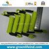 Longe pleine forte courte forte de lanière d'enroulement du vert 5.0mm de citron