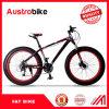 堅いフォーク高レベルカーボンFatbikeの雪のバイクの熱い販売の完全なカーボン脂肪質のバイク