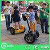 CE/FCC/RoHSは中国のスクーターCa300を示す