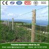 Heißer eingetauchter galvanisierter Bereich-Tierzaun/Vieh-Zaun