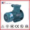 Ex-Beweis elektrischer Wechselstrommotor mit Qualitäts-hoher Leistungsfähigkeit