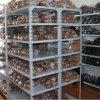 Австралийское Powder Coating Light Duty Warehouse Shelving с Economical Price
