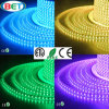 SMD5050 imperméabilisent la lumière de bande flexible de DEL avec du ce RoHS d'ETL