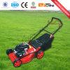 ガソリン芝刈機か芝生の刈る機械を手で押しなさい