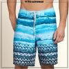 A placa nova dos homens do projeto Shorts o Swimsuit