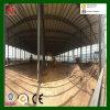 Fabricación del taller del almacén de la estructura de acero de la profesión