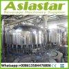 Agua mineral completamente automática produciendo el agua pura de la planta produciendo la máquina