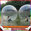 Opblaasbare het Lopen van het Water Bal, de Menselijke Bal van de Hamster, de Opblaasbare Bal van het Water
