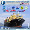 20'/40'40hq Container Sea Freight From China to Manama