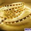 온난한 백색 SMD LED 지구 (SL-3528M-300A)