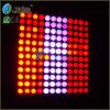 Het Licht van de Rassenbarrière van het Pixel van Vangaa (Vg-LCI123C)