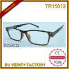 Bâti neuf de la tendance TR avec les lunettes de soleil polaroïd de lentille (TR15012)
