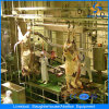Cer Halal Cattle Slaughter House Equipment in Abattoir