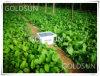 Repeller ultrasonico solare dell'uccello per agricoltura