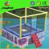 Mini carré Trampoline avec Ladder (LG050)