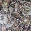 El árbol fósil de piedra mezcla ideas de los azulejos de la piedra de la muestra libre de la chimenea del mosaico del granito de los trazadores de líneas de la pared del baño de los azulejos de Backsplash de la cocina del azulejo