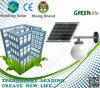 Luz accionada solar verde de la pared de la energía LED para usar al aire libre
