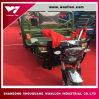 De Elektrische 48V Driewieler met drie wielen van de Macht voor Passagier en Lading
