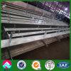 Viga de acero fabricada soldada de H para la estructura de acero (SSW-2)