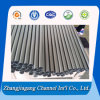 La Cina Golden Supplier Titanium Pipe con Different Specification