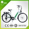 Versteckte Battery 26inch Stadt E Bike 36V250W (RSEB-301)