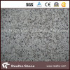 Telha branca do granito do Paulin G439 para o assoalho e a parede