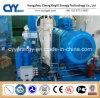 CNG34によってスキッド取付けられるLcng CNGの液化天然ガスの組合せの給油所