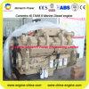 Moteur diesel marin principal de la propulsion 230kw