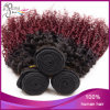Black WomenのためのブラジルのKinky Curly Ombre Virgin Hair
