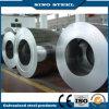 SPCC+Zinc a galvanisé la tôle d'acier/enroulement