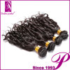 アフリカ系アメリカ人のヘアケア製品のバージンのインドのRemyの螺線形のカールの毛