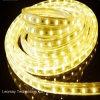 Indicatore luminoso di striscia approvato di alta tensione SMD5050 30LED/M LED del CE di qualità superiore