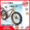 Fat Bike Frame Made in China, Novo estilo de boa qualidade MTB Snow Bike, Fat Bike, Fat Tire Bike, Carbon Fat Bicycle
